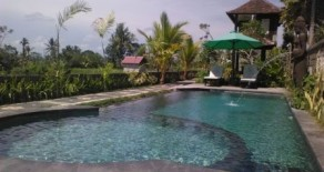 Nice villa in Ubud with two storey building