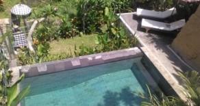Very nice villa near Ubud central art