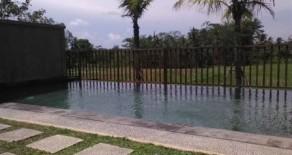 Nice villa near Ubud central art