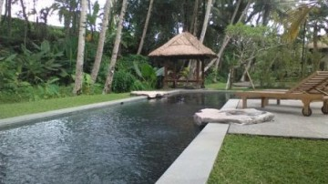 Rice field villa in Ubud