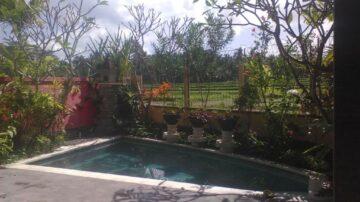 Nice villa in Ubud with wonderful rice field view