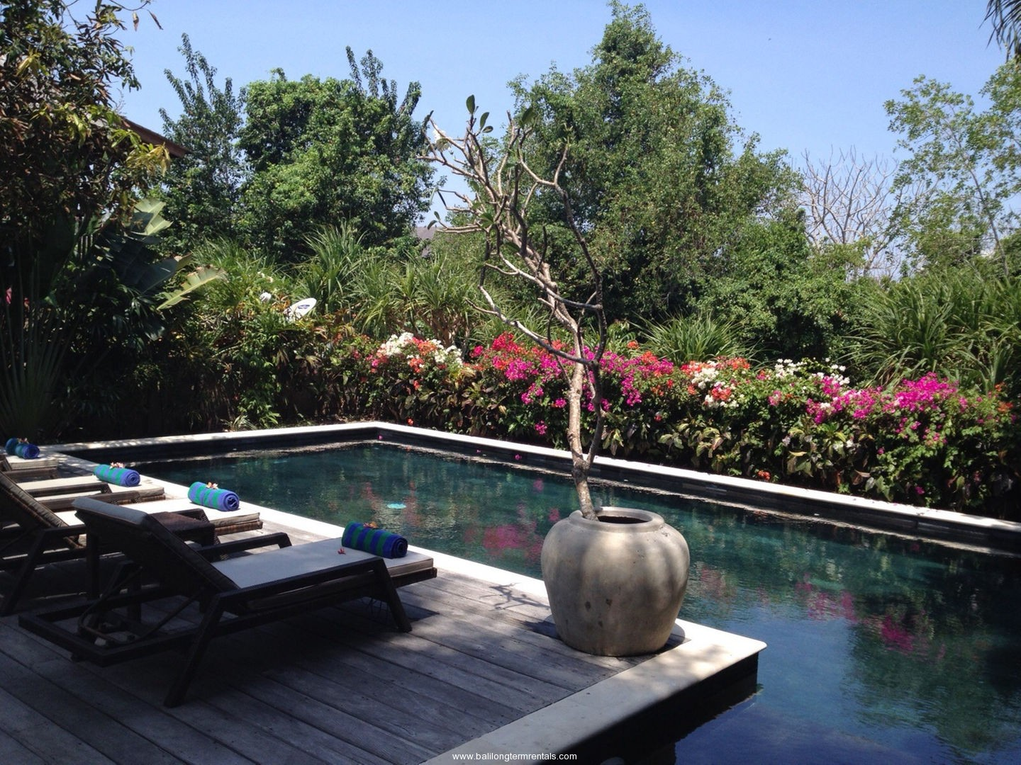 lovely 5 bedroom villa walking distance to the beach in canggu
