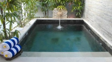 Cozy 2 bedrooms villa at Seminyak Prime location ( only For daily )