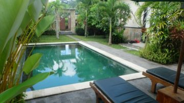 2 bedroom villa with queit and rice field view area in Ubud