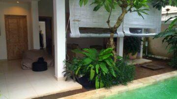 3 bedroom villa in Canggu