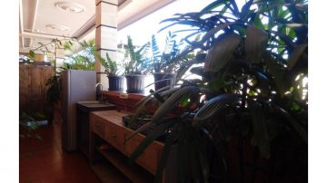 Fully furnished two bedroom apartment in central Seminyak
