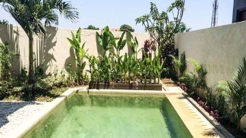 3 bedroom villa for yearly rental in Kerobokan